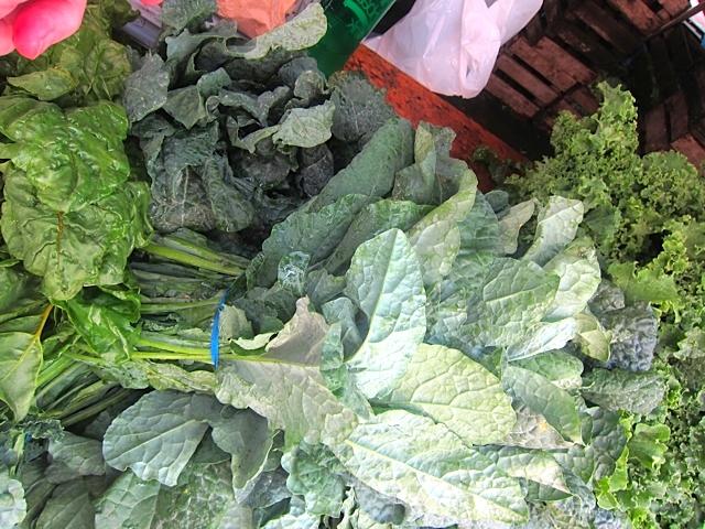 A variety of kales