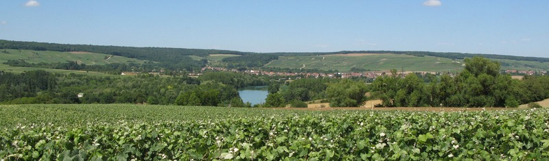 marne-valley