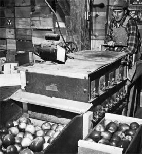 historical_vintage_hard_cider_apple_production_facility