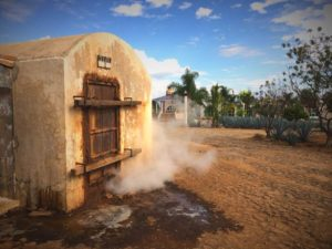 Tequila, Agave Pina Steaming Horno, Brick Oven - Wine4Food