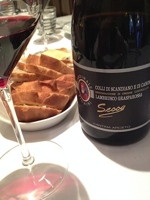 Dry red Lambrusco from near Bologna, one of the world's greatest food-matching wines