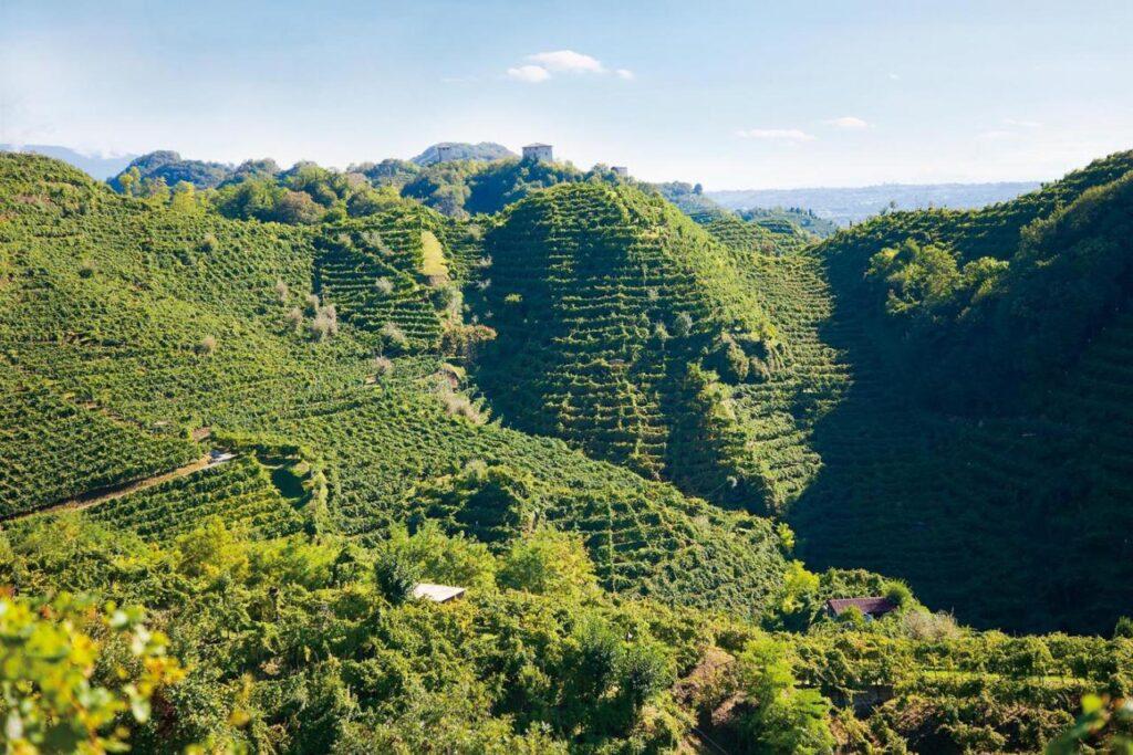 prosecco-docg-hills