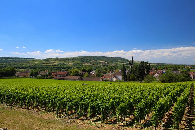 navin-rajagopalan_burgundy-france_flickr