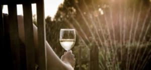 Glass_Verdejo_Spanish_White_Wine
