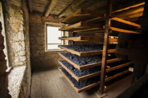 CORNER WINDOW-RACKS OF Drying GRAPES - Appassimento