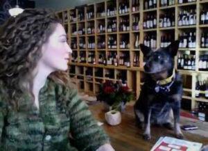 LILY PEACHIN_Dandelion_Wines_Women_Retailers