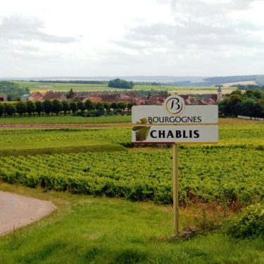 Chablis_Countryside_France_Wine4Food